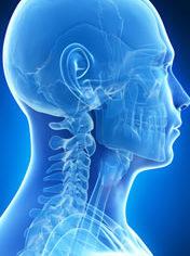 patologie del sistema craniosacrale osteopata roma nord