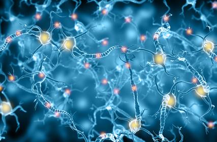 siamo tutti svagati sintomatologie nervo vago